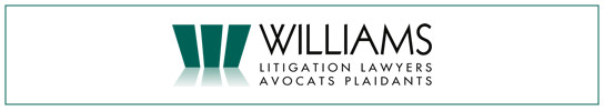Ottawa Personal Injury Law Firm - Williams Litigation Lawyers